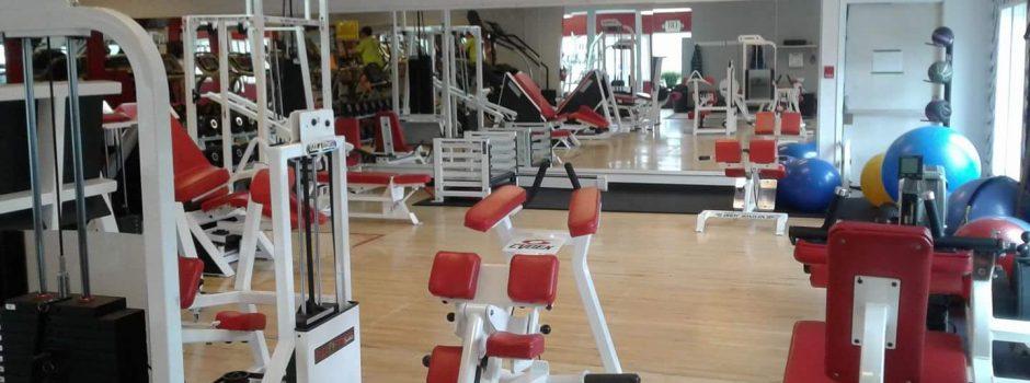 gymStretch